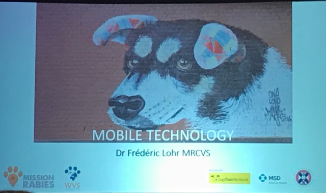 Close up of projected slide, featuring a dog image