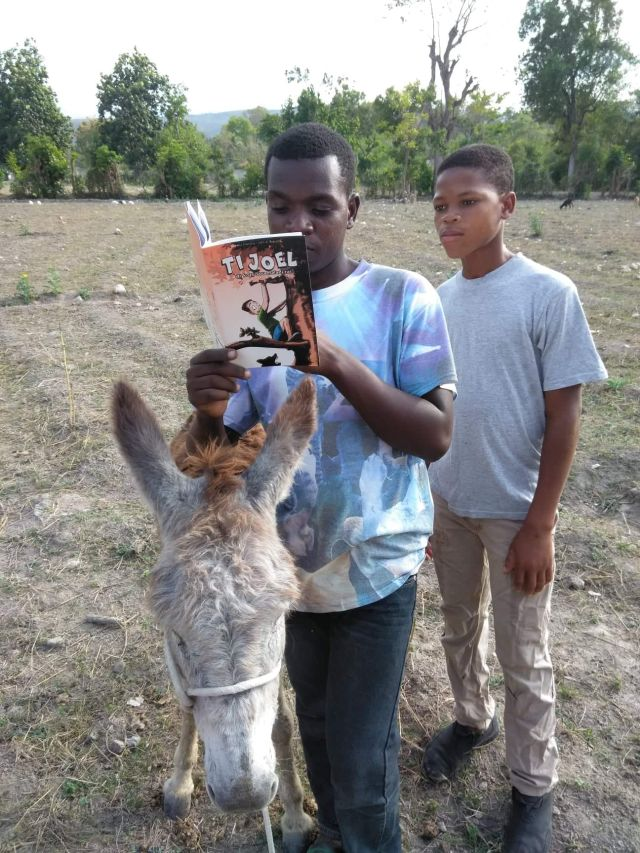 Two boys in a field next to a donkey, reading a comic book